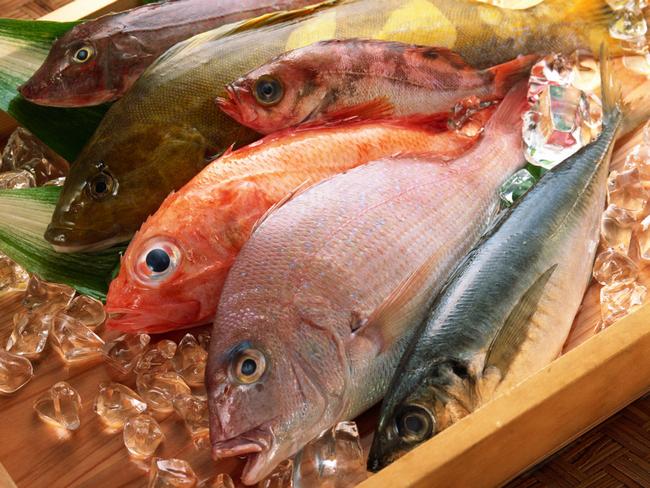 Какая рыба самая полезная и как приготовить рыбу для диетического питания