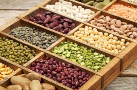 Растительные белки в рационе спортсмена