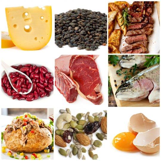 20 лучших источников белка