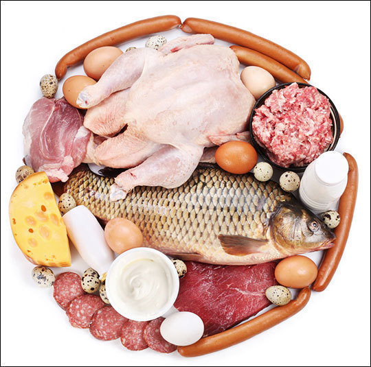 Вопросы о белке