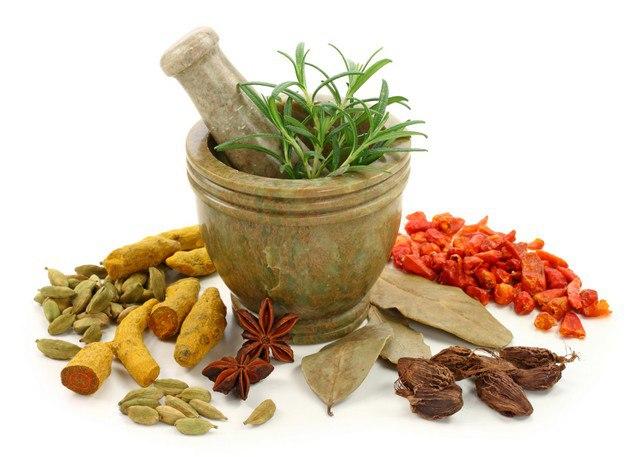 Самые эффективные и полезные травы для похудения