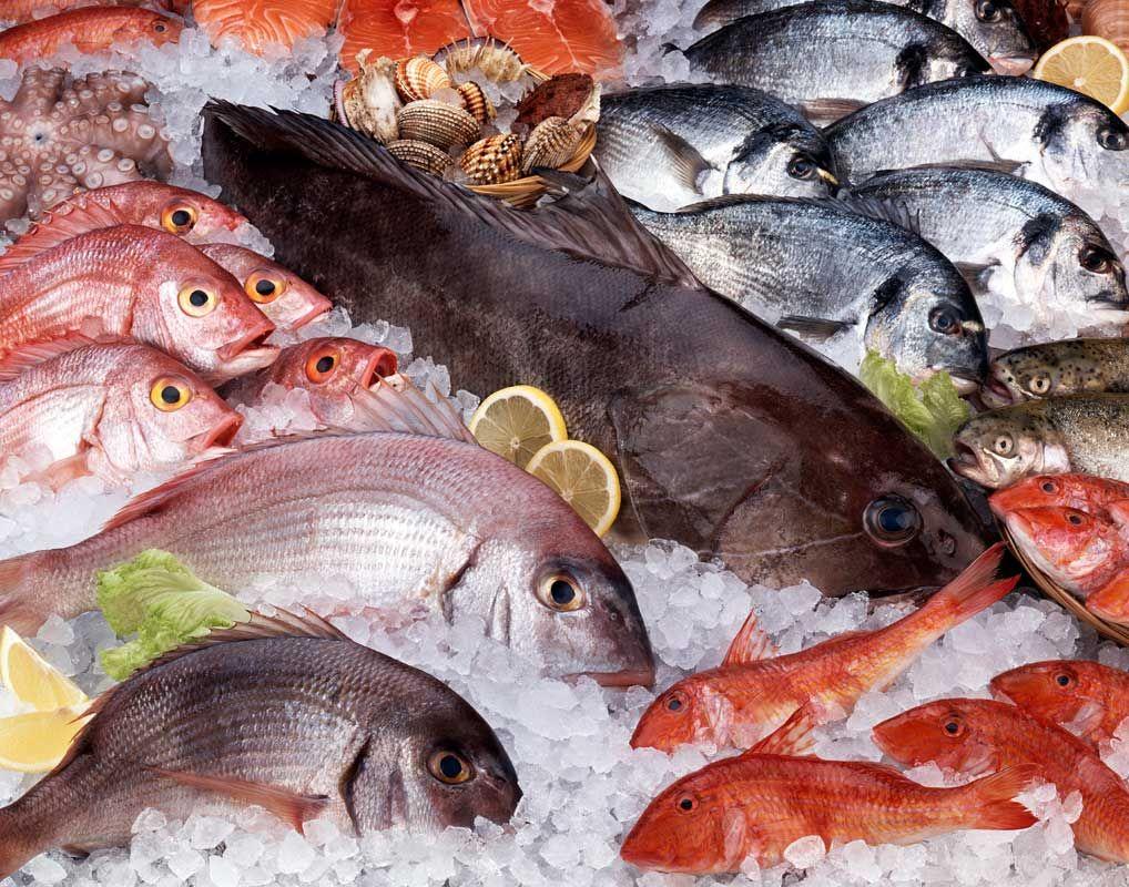 Какая рыба полезнее?